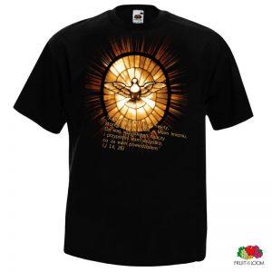 capax-dei-koszulka-meska-pocieszyciel